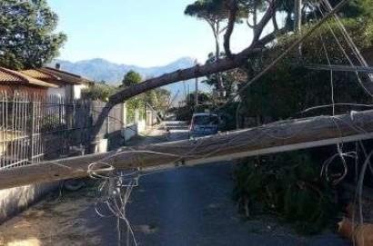 Danni del maltempo: oltre 150 persone di Enel impegnate nell'emergenza solo in provincia di Arezzo