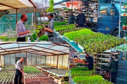 Rino Falcinelli: agricoltore in Salcotto