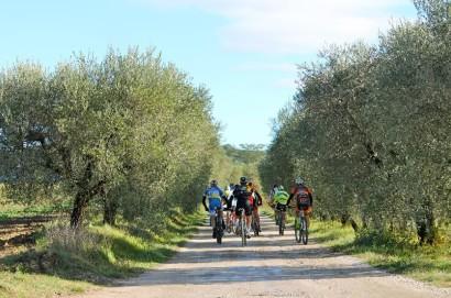 Domenica 30 ottobre seconda edizione del Vinsanto Bike Tour
