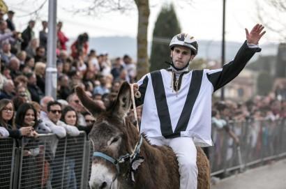 Porta Nova vince il Palio dei Somari 2017 di Torrita di Siena - LE FOTO