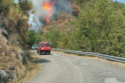 Incendio nei boschi tra Teverina e Falzano di Cortona