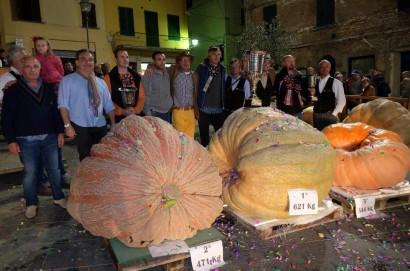 Pesa la zucca: in Toscana la battaglia delle zucche giganti