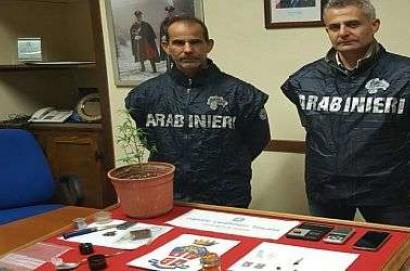 Maxi operazione andidroga dei Carabinieri in Valdichiana. 3 arresti e 63 denunce