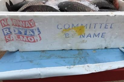 Trasportava carico di pesce in pessime condizioni igieniche
