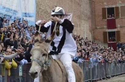 Si arricchisce il programma del 58° Palio dei Somari di Torrita di Siena