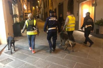 A Castiglion Fiorentino movida sicura grazie alle sinergie messe in campo dalle forze dell'ordine