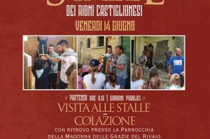 Visita alle Stalle dei Rioni di Castiglion Fiorentino