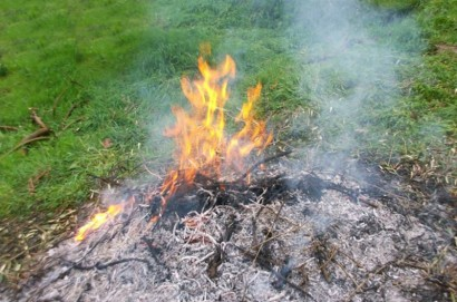 Incendi, scatta il divieto assoluto di dar fuoco ai residui vegetali. Segnalazioni al Numero verde 800.425.425