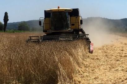 Pasta a Km Zero grazie all'accordo siglato da Coldiretti, Filiera Agricola Italiana e Pastificio Fabianelli