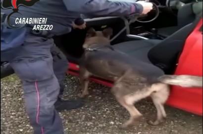 Operazione Last Call dei Carabinieri di Arezzo e Cortona: 5 arresti e 7 denunce per droga