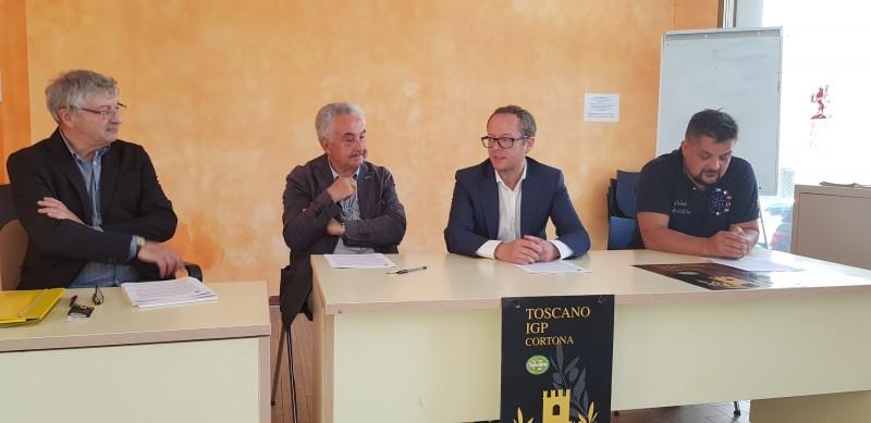 Nasce l'Olio Toscano Igp a marchio Cortona