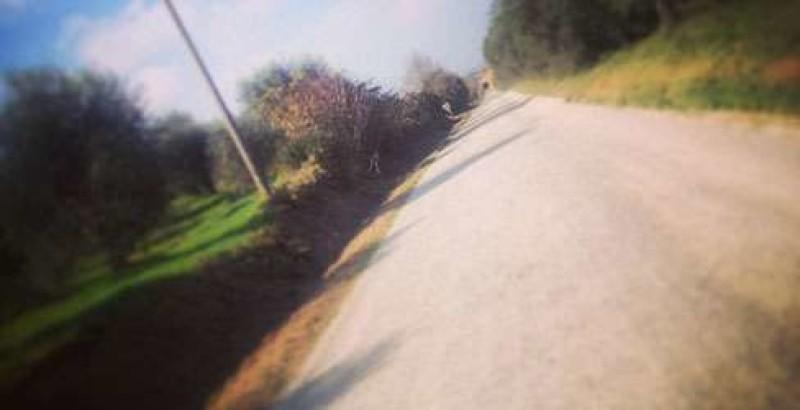 """Sarteano: un piano """"antibuche"""" su asfalti e strade bianche"""